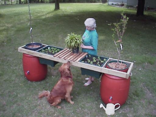 Elevated Container Gardening